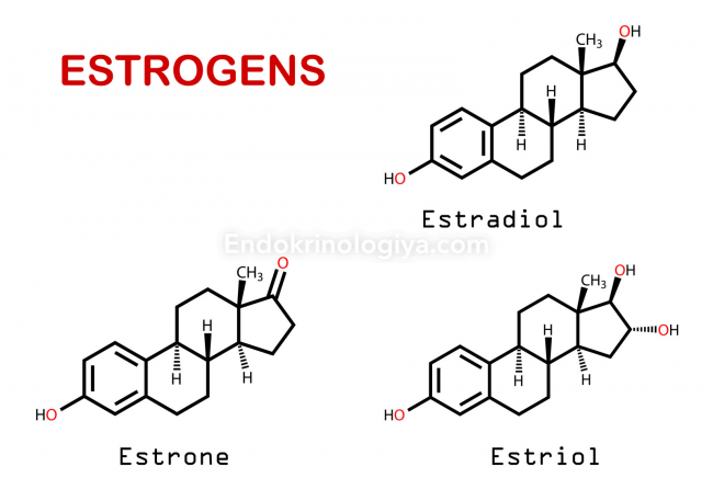 Анализ на гормоны эстроген и прогестерон